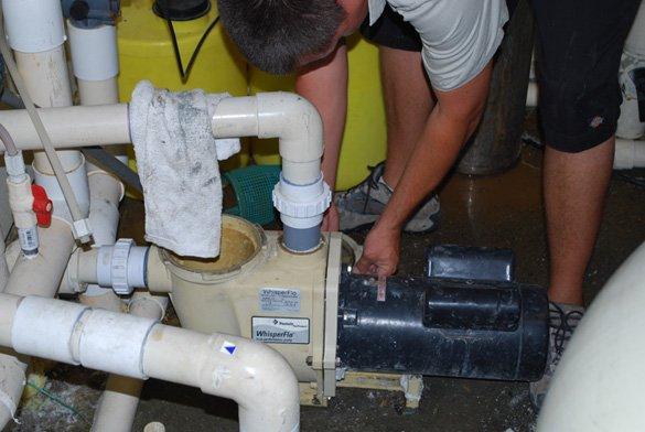 Pool Pump Repair Seal Plate Leak In San Diego Protouch