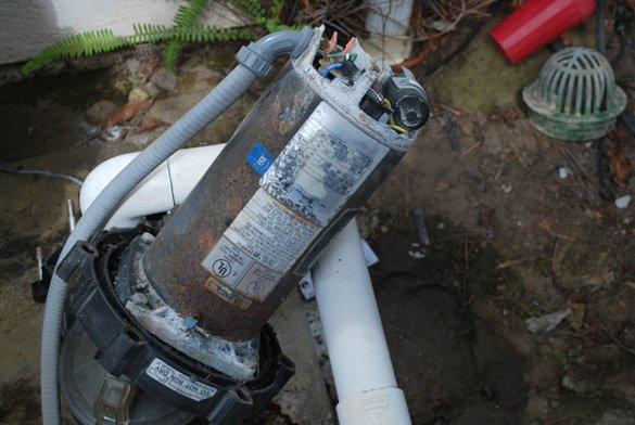 2-hp-Sta-Rite-Dyna-Glas-pump-motor